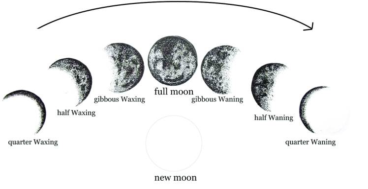 moon_arriow